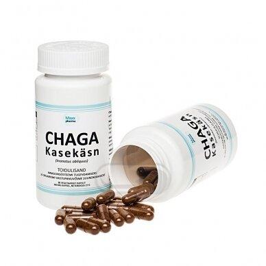 MAXX  Pharma Chaga 500mg N60