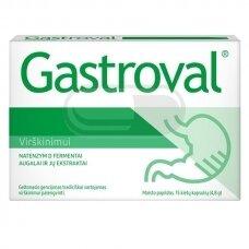 Gastroval N15