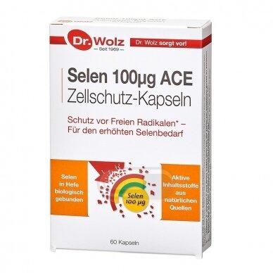 DR.WOLZ Selen 100 µg ACE N60